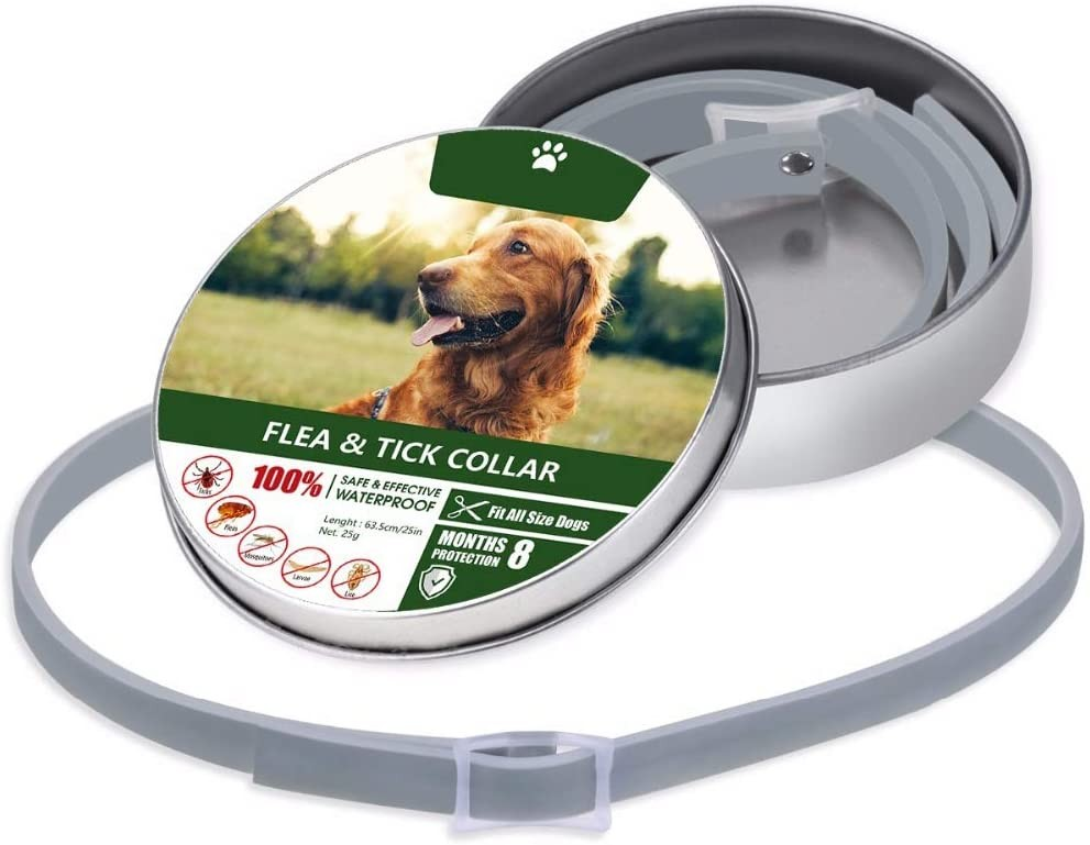 Flea and Tick Collar - 8 Month Protection Adjustable Waterproof Collar for Dog Puppy Kitten Cats