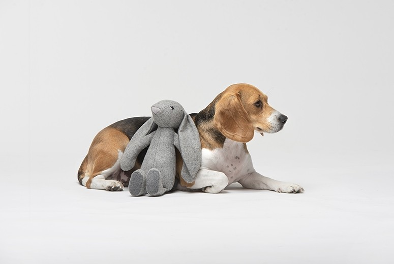 Rabbit Plush Toy for Dogs