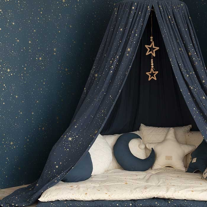 Night Sky Bed Canopy