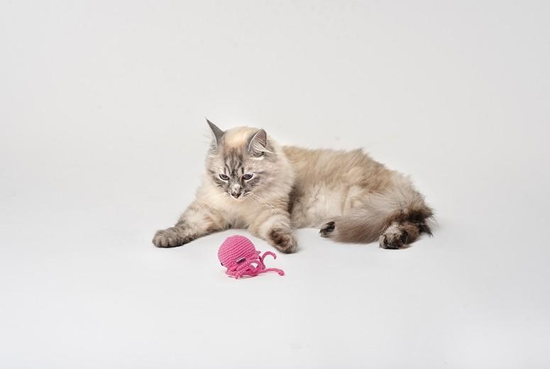 Organic Jellyfish Cat Toy