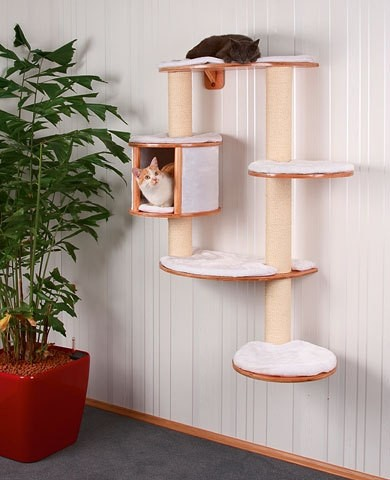 Wall Cat Play Set