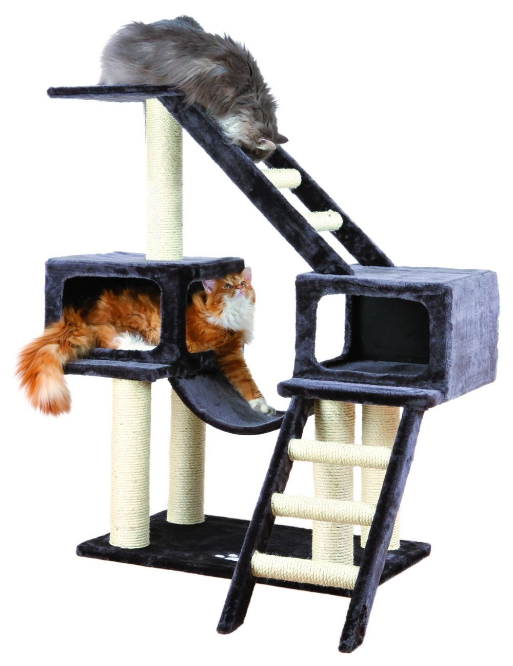 Playground for Cats