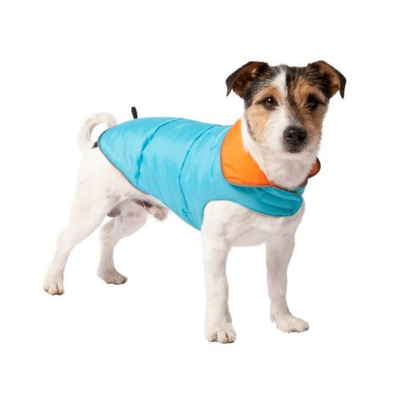 Reversible Blue or Orange Dog Coat