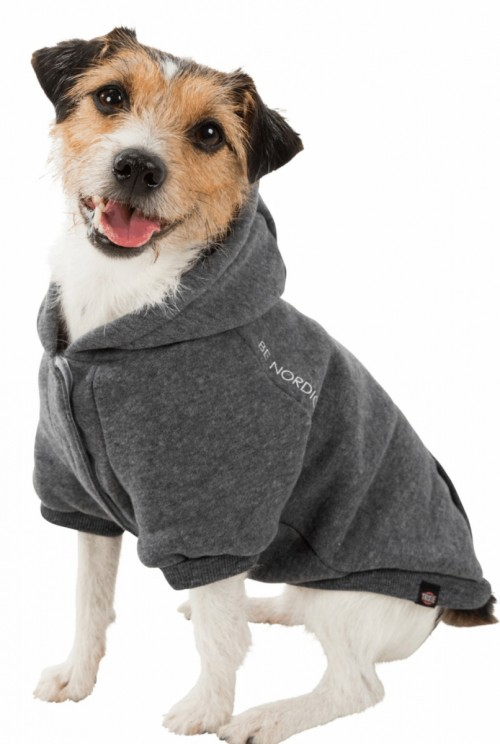 Gray Nordic Dog Hoodie