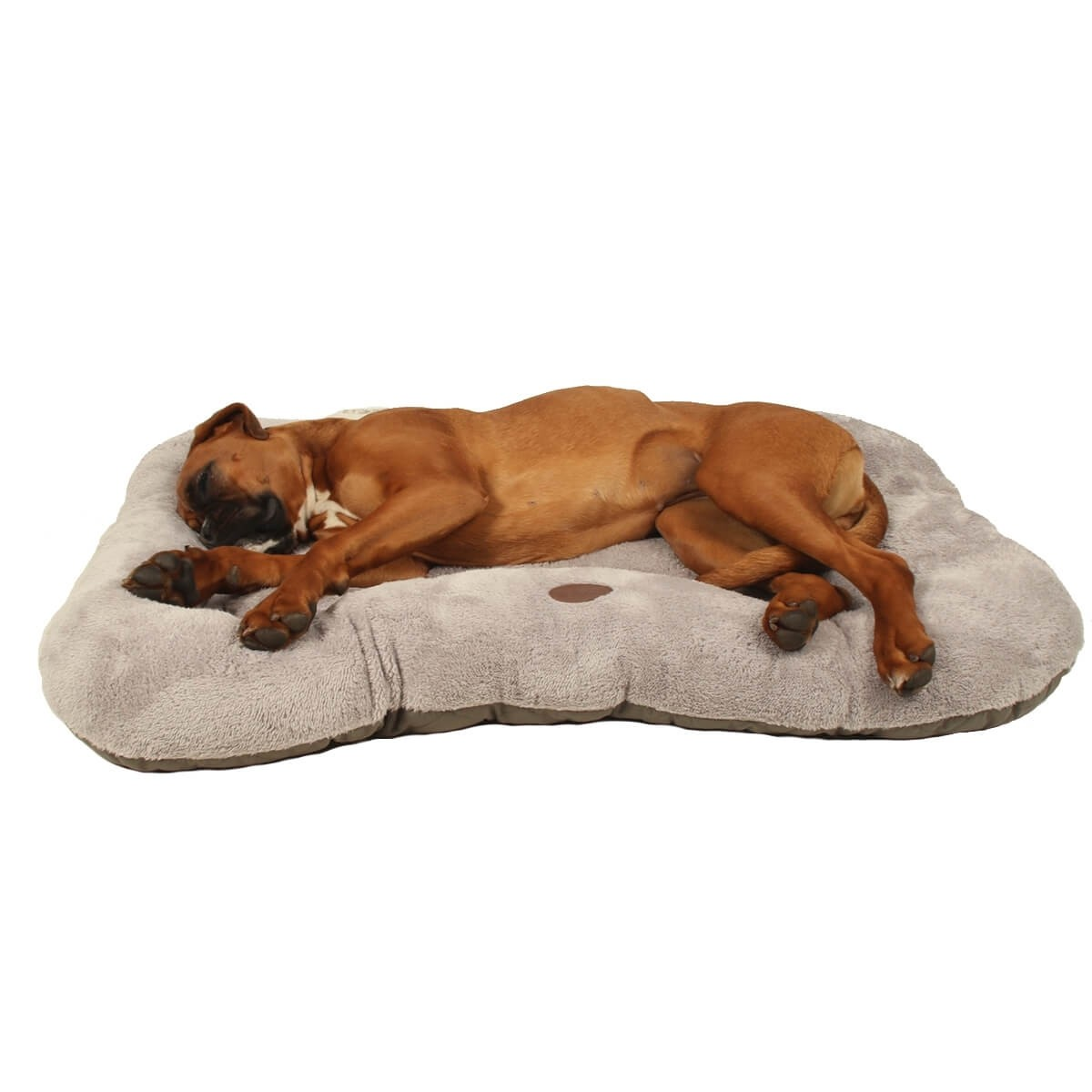 Bony Dog Bed