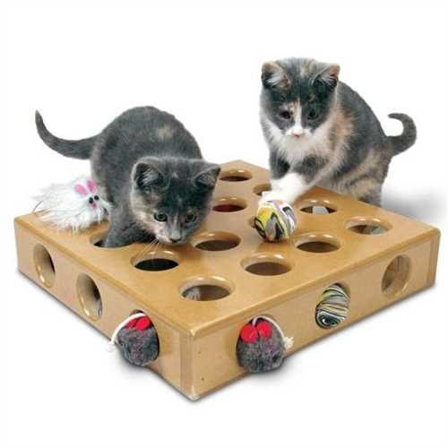 Hunt your Prey Toy Box