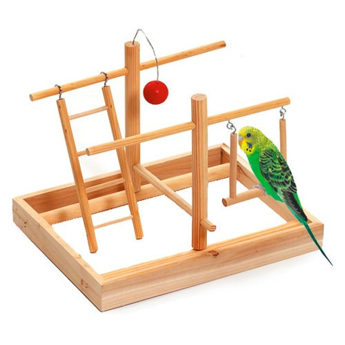 Playground Gym for Parakeets and Lovebirds