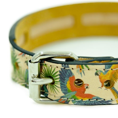 Elegant Tropical Dog Collar