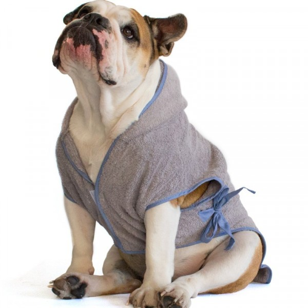 Gray Bathrobe for Bulldog