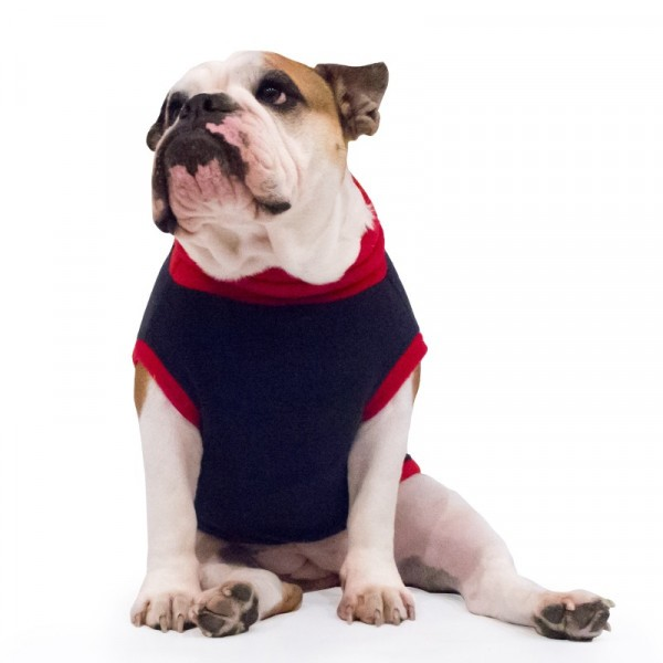 Fleece for Bulldog Dogs