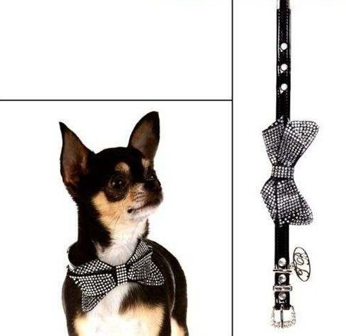 Black Luxurious Dog Collar