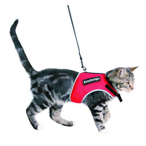 Reflective Band Harness with Leash for Cats