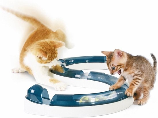 Cat Play Circuit