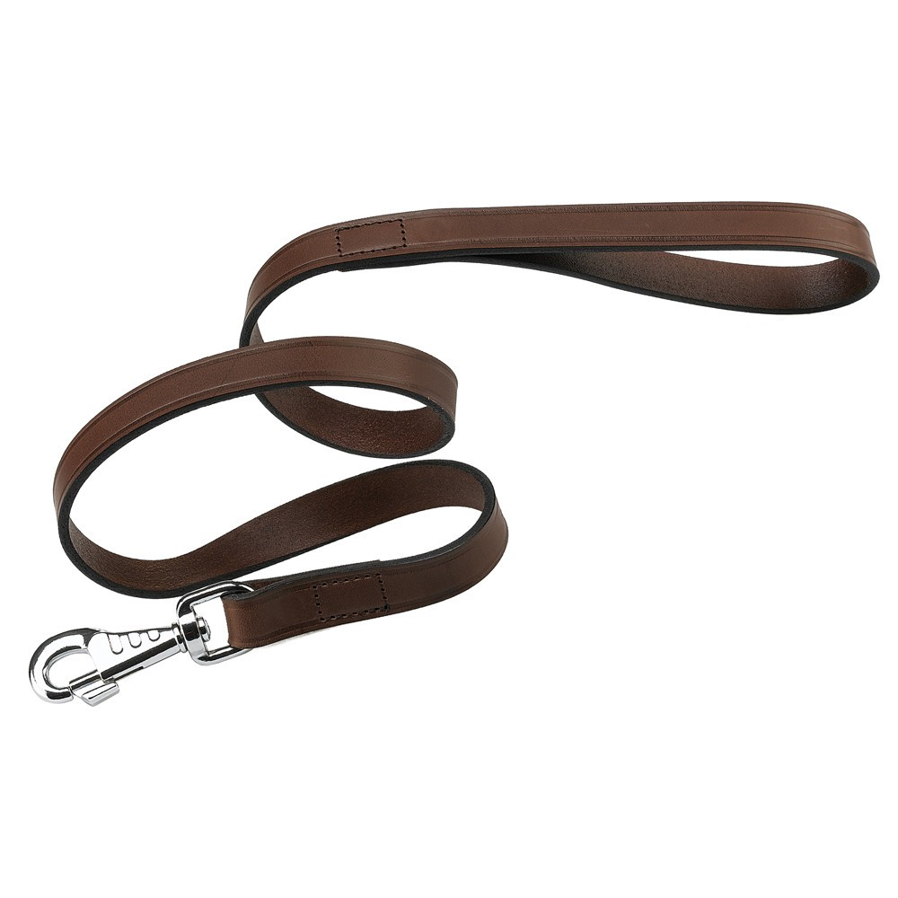 Classic and Elegant Dog Leash