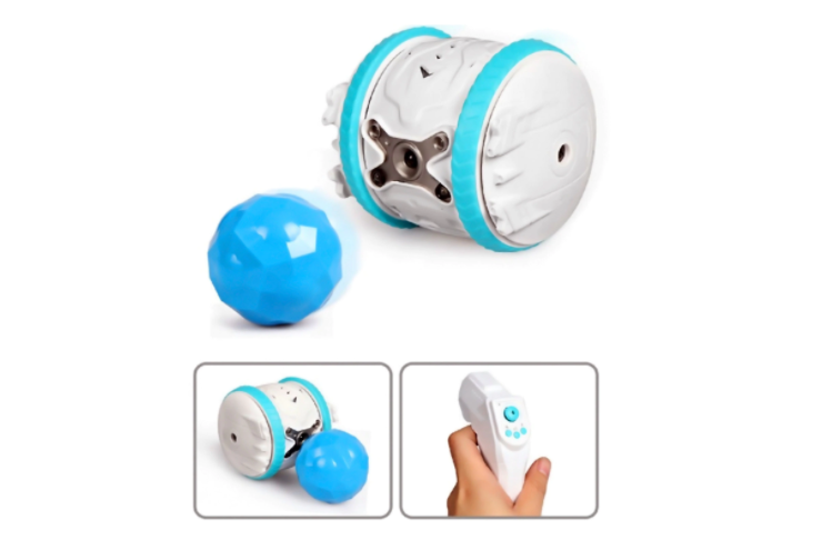 Smart Toy Programmable with Remote Control