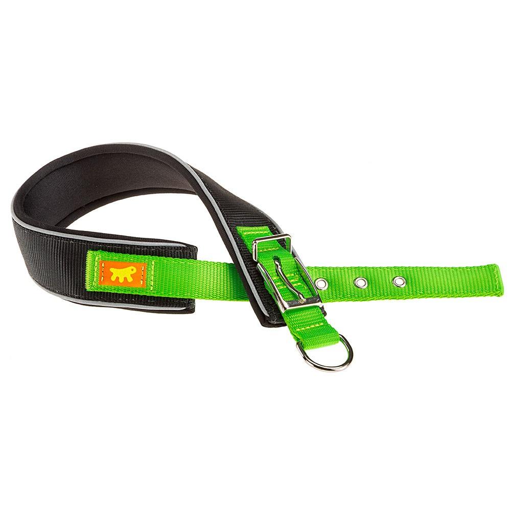 Ergonomic Collar for Dogs