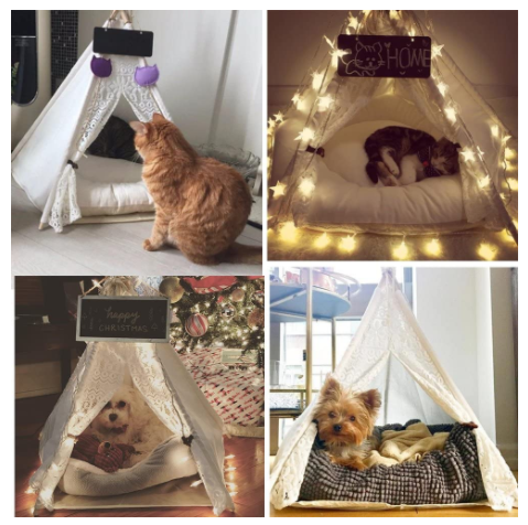 Indoor Tent for Puppies, Cats and Bunnies