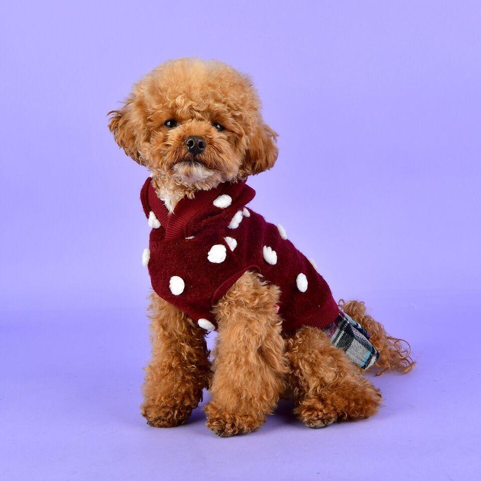 Dotty Sweater with Tartan Skirt