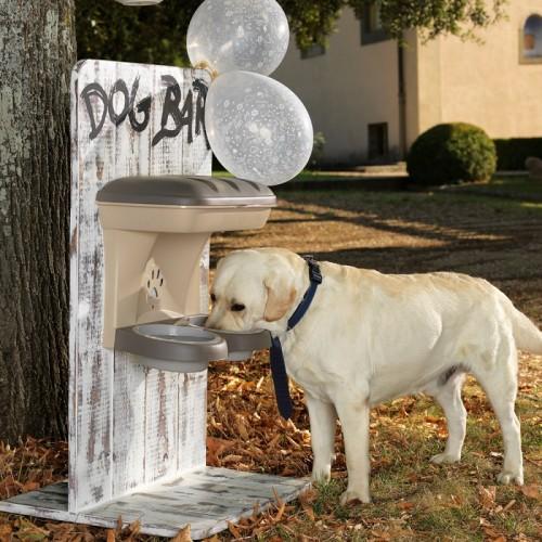 Dog Food Stand