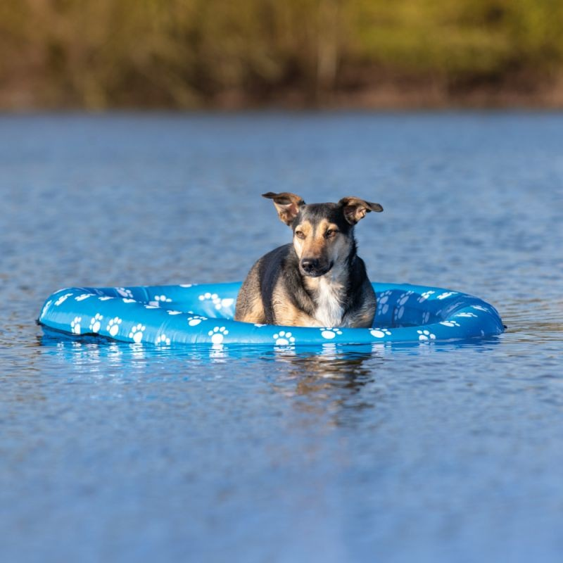 Inflatable Dog Boat