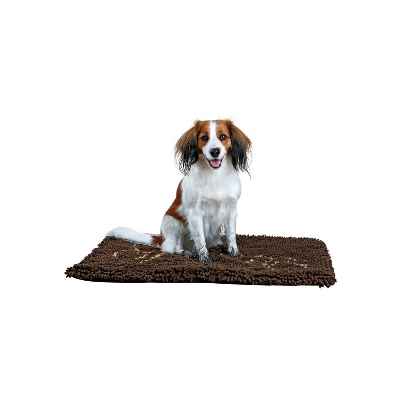 Absorbent Carpet for Dogs