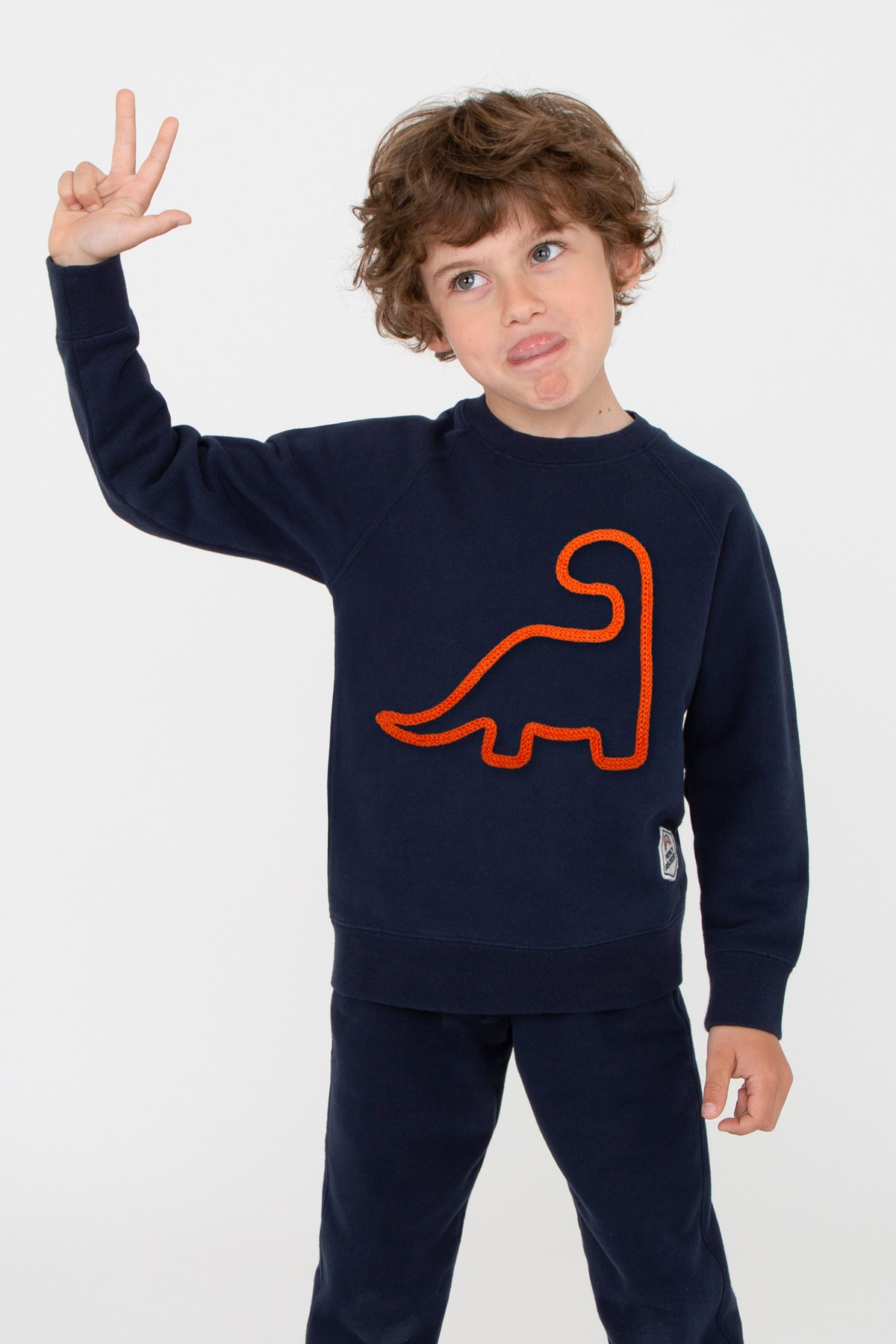 Little Dino Sweatshirt