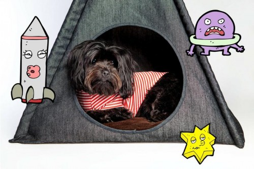 Cozy Denim Pet Tent