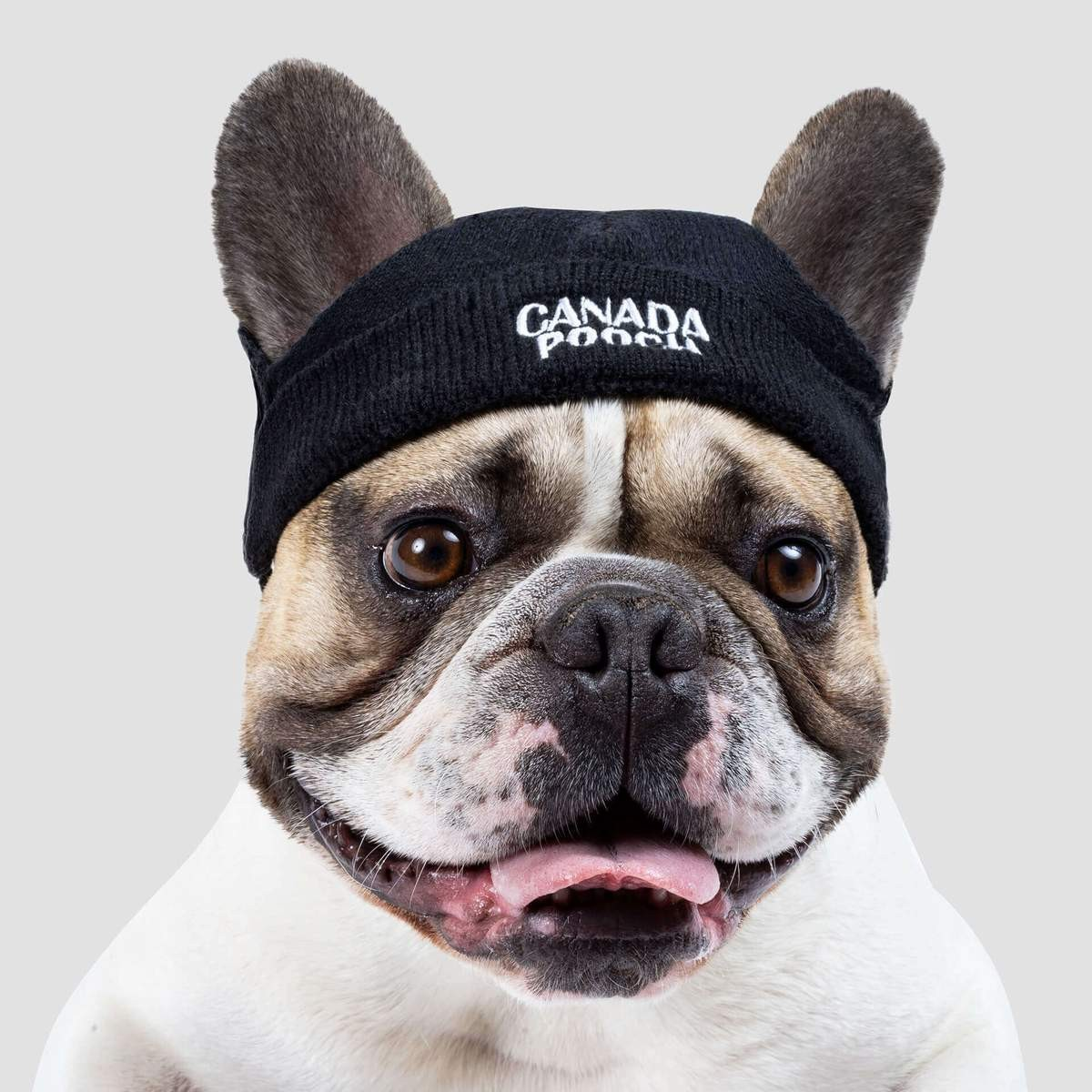 Basic Beanie in Black