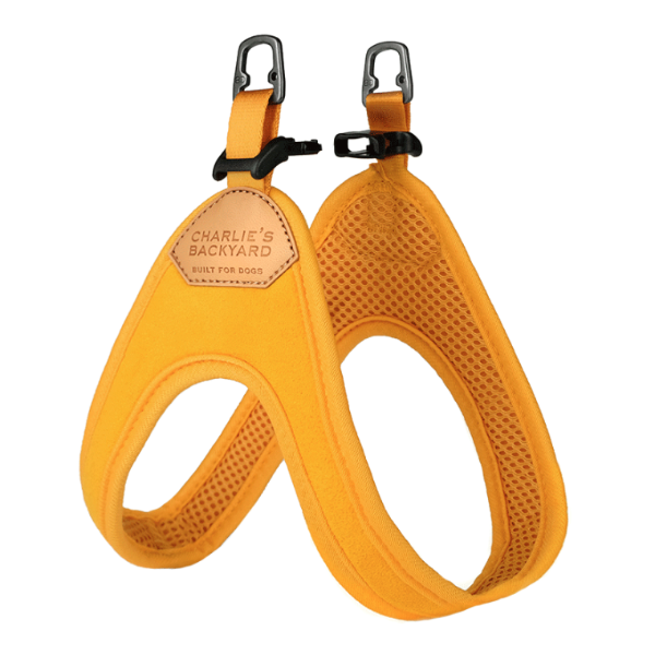 Buckle Up Easy Harness in Yellow