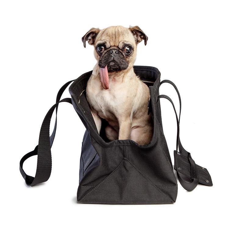 Compact Zipper Bag in Black