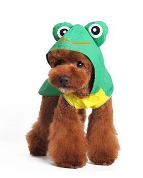 Frog Raincoat in Green