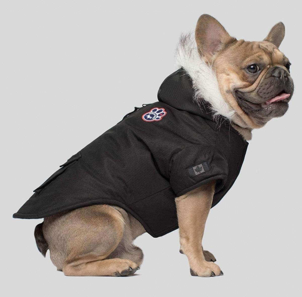 Cozy Dog Parka in Black