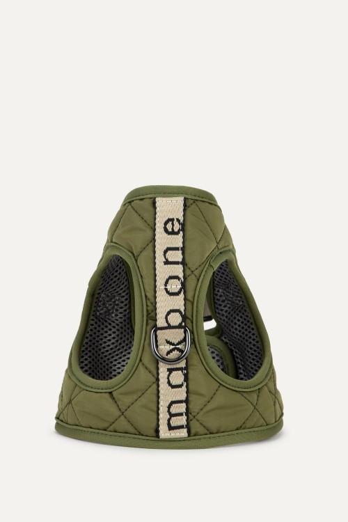 Safe Trotter Harness