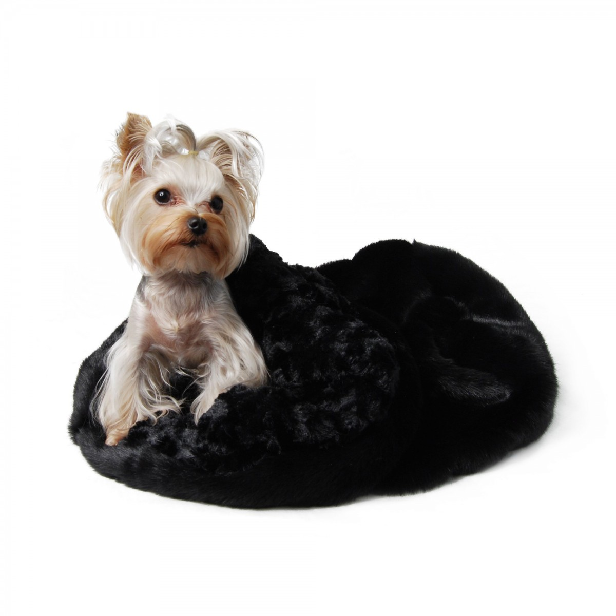 Sweet Black Cuddle Cup Dog Bed
