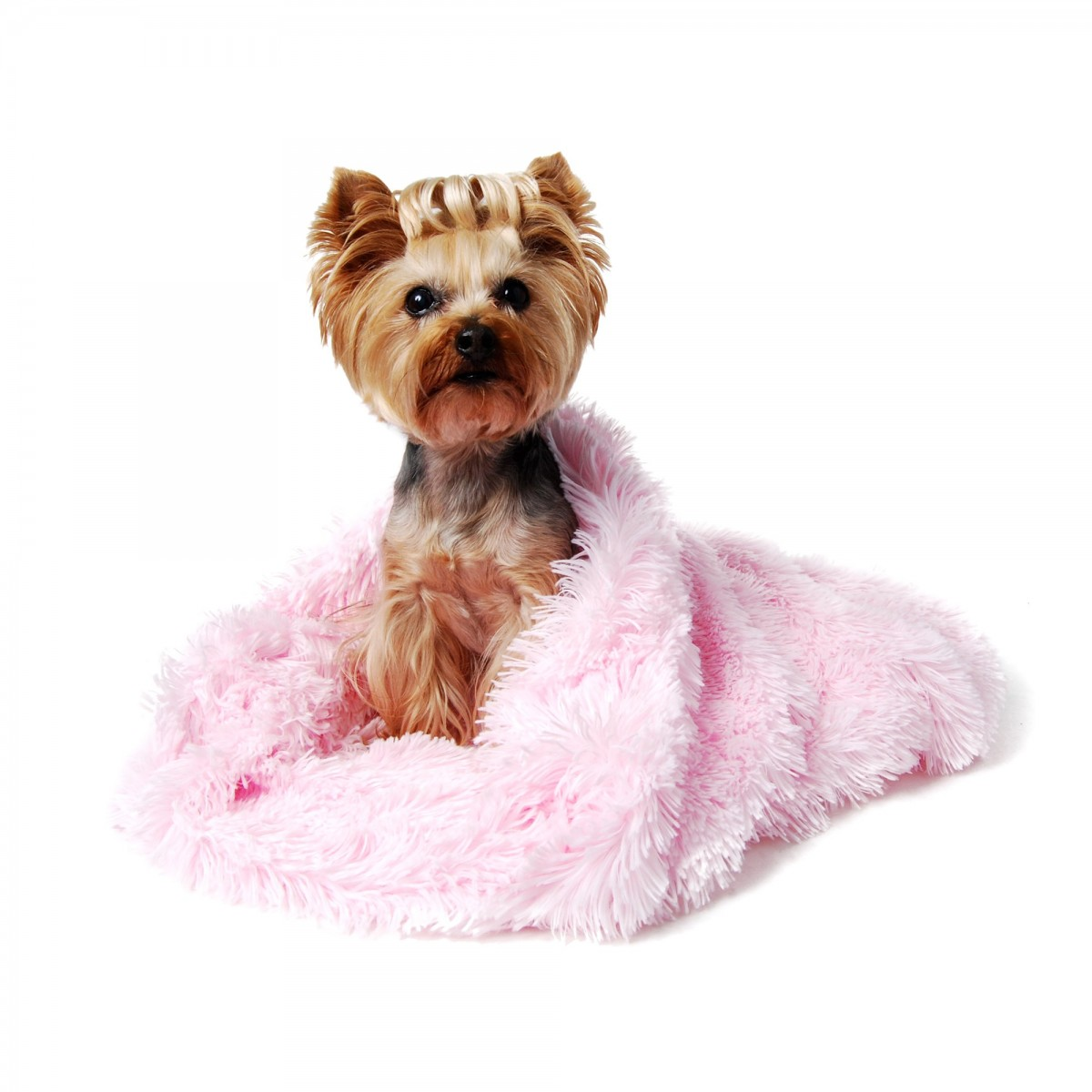 Cozy Pink Dog Bed