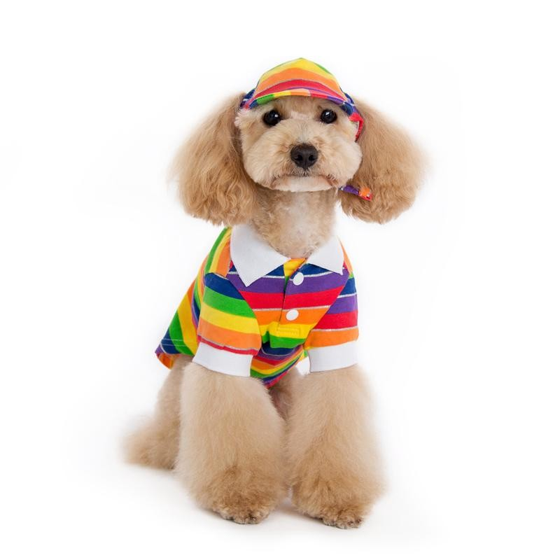 Rainbow Stripe Polo Dog Shirt