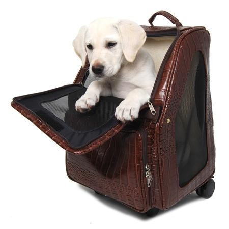Brown Faux Croc Wheeled Dog Carrier