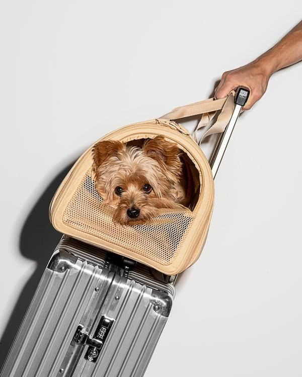 Comfortable Travel Carrier
