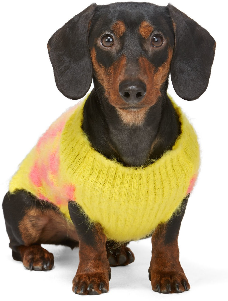 Cool Wool Sweater in Yellow