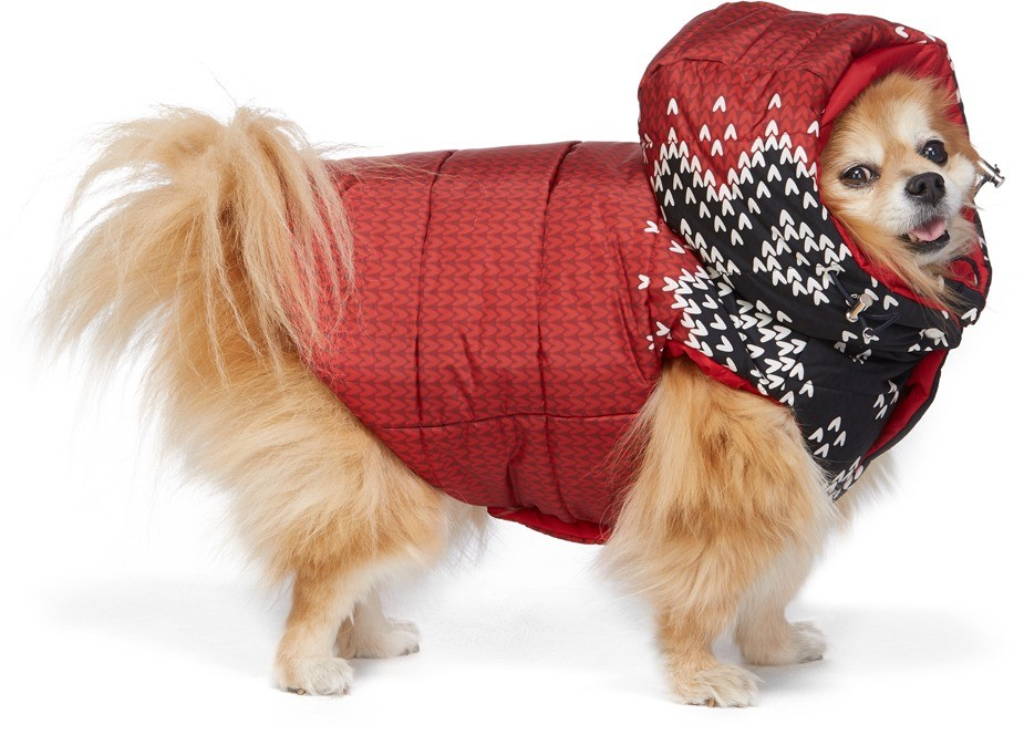 Insulated Quilted Nylon Jacket in Red