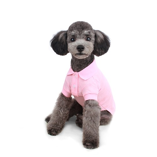 Sweet Polo Shirt in Pink