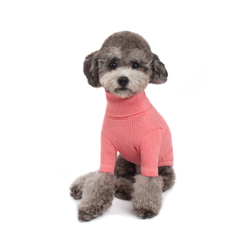 Cozy Basic Turtleneck in Pink