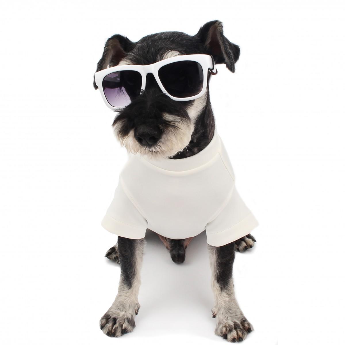 White Cool Summer Basic T-Shirt