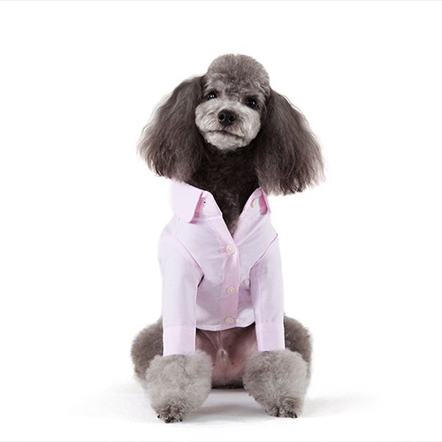 Pink Solid Dog Shirt