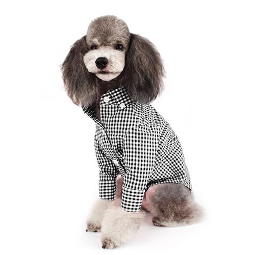 Black Button-down Check Dog Shirt