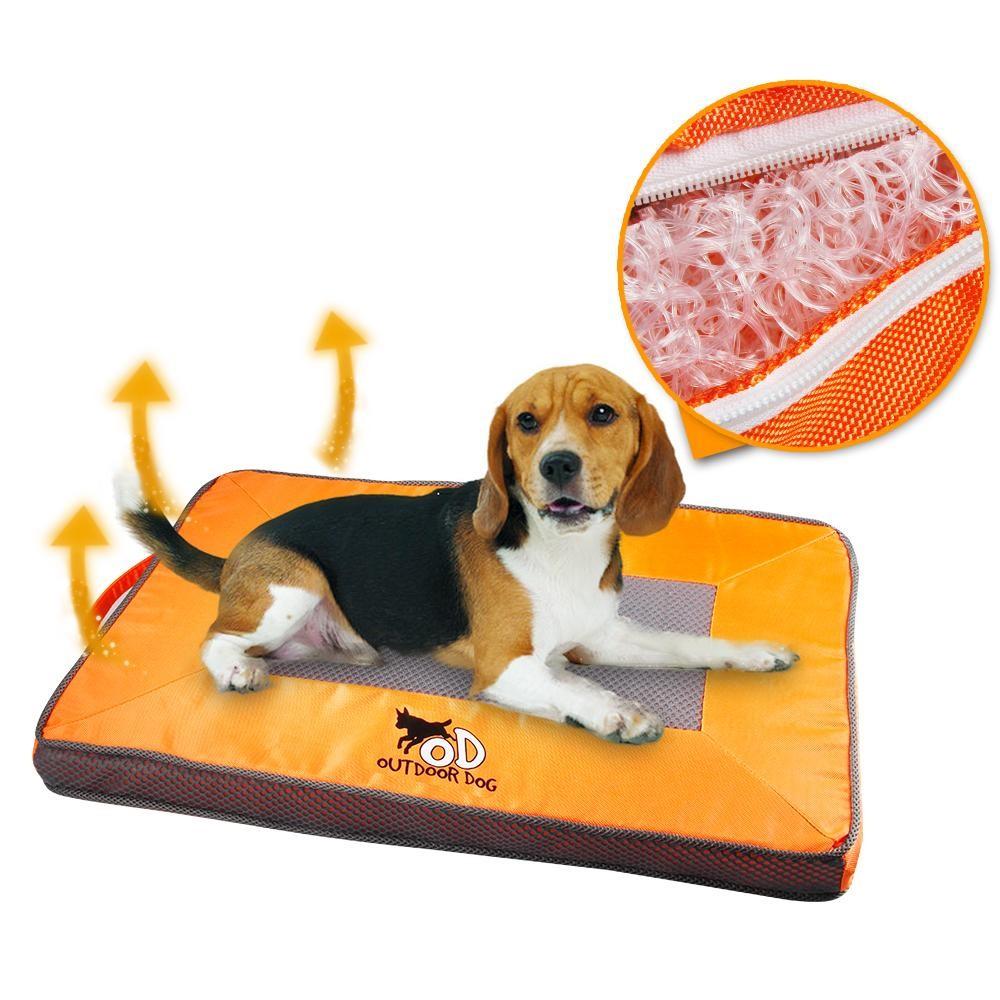 Fresh Orange Dog Cat Cool Mat