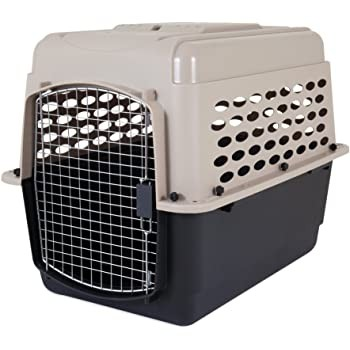 Useful Intermediate Pet Carrier
