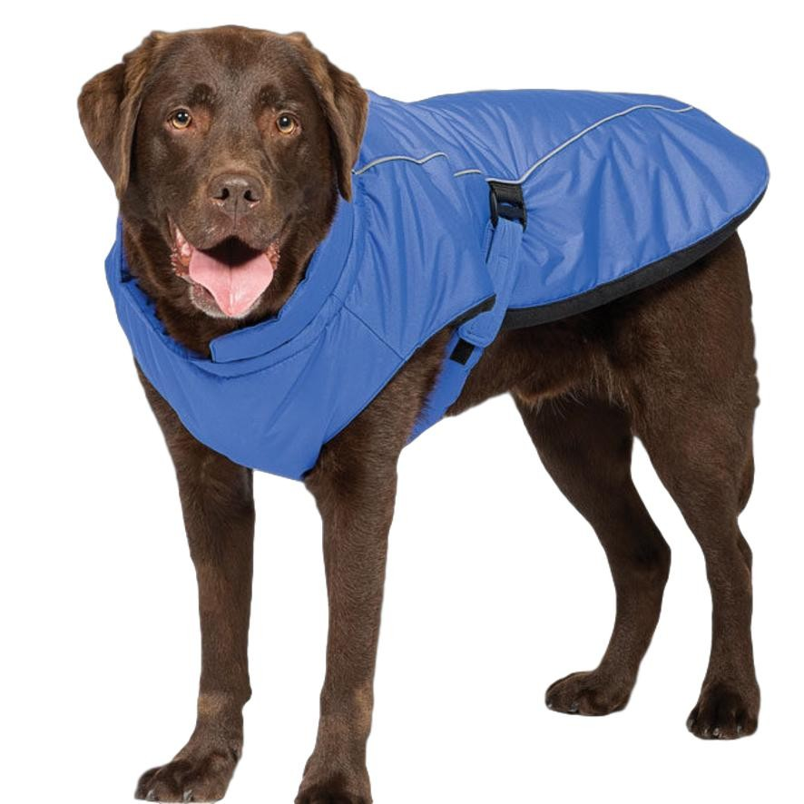 Blue Luxe Dog Coat