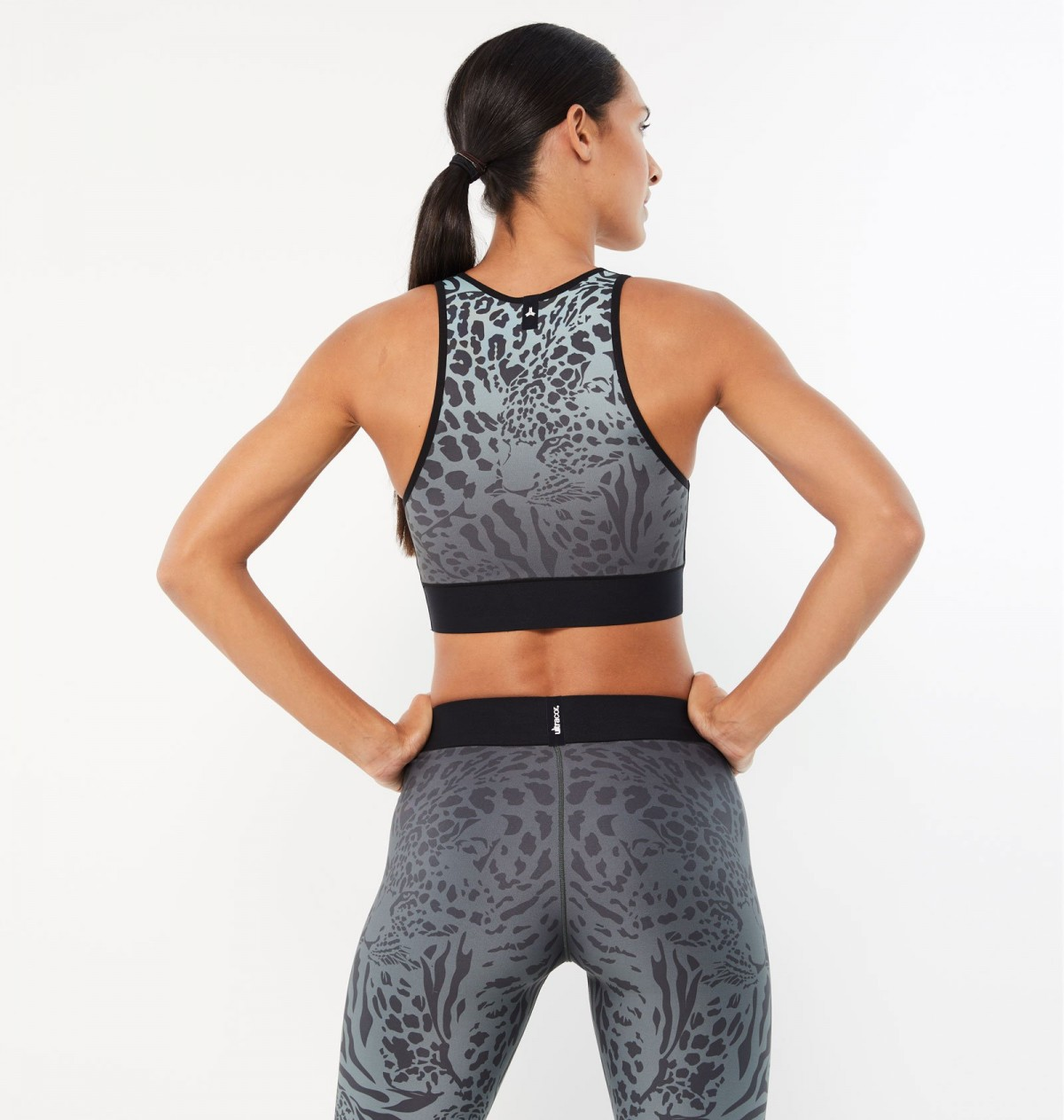 Mint and Graphite Panthera Crop Top