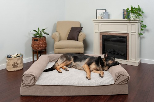 Basic Cream Dog Bed with Removable Cover